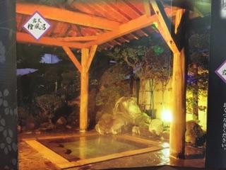 fujiya-hotel2